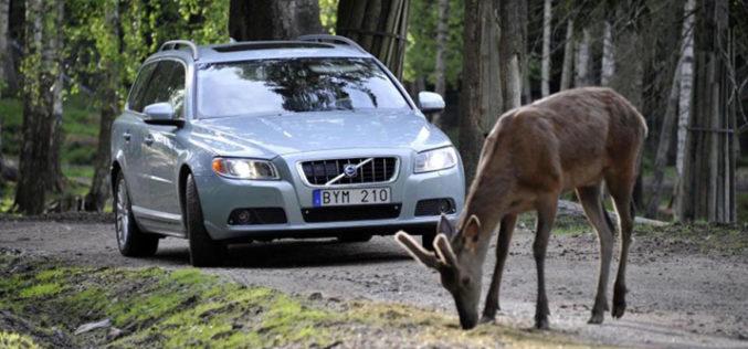 Volvo uvodi promjene u ponašanju vozača novim sigurnosnim sistemima