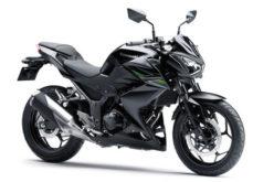 Novi Kawasaki Z naked