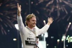 VN Abu Dhabija 2015: Rezultati utrke